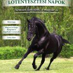 Nevezési felhívás – Magyar Ló Kupa fogathajtó versenyek